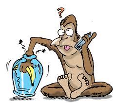 https://willianeycarvalho.files.wordpress.com/2013/10/3c6e4-macaco_banana.jpg